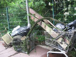 Hogsmill Clean Up by the University